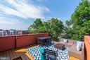 Amazing roof deck with the best views! - 2242 ONTARIO RD NW #3, WASHINGTON