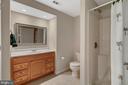 Lower level full bath - 6134 WALKER'S HOLLOW WAY, LOCUST GROVE