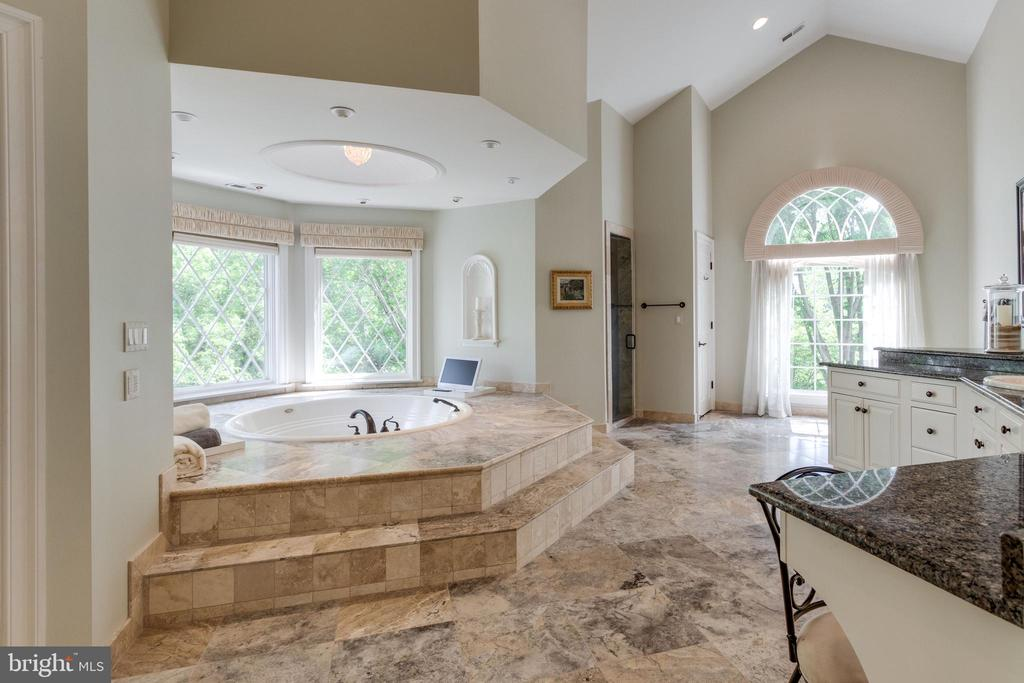 Spa inspired Master Bath - 10010 HIGH HILL PL, GREAT FALLS