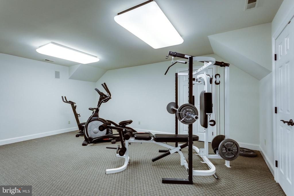 Mirrored Exercise room on the 3rd Level - 10010 HIGH HILL PL, GREAT FALLS