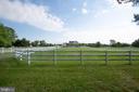 All the fencing is vinyl-Low Maintenance - 7411 SNOW HILL DR, SPOTSYLVANIA