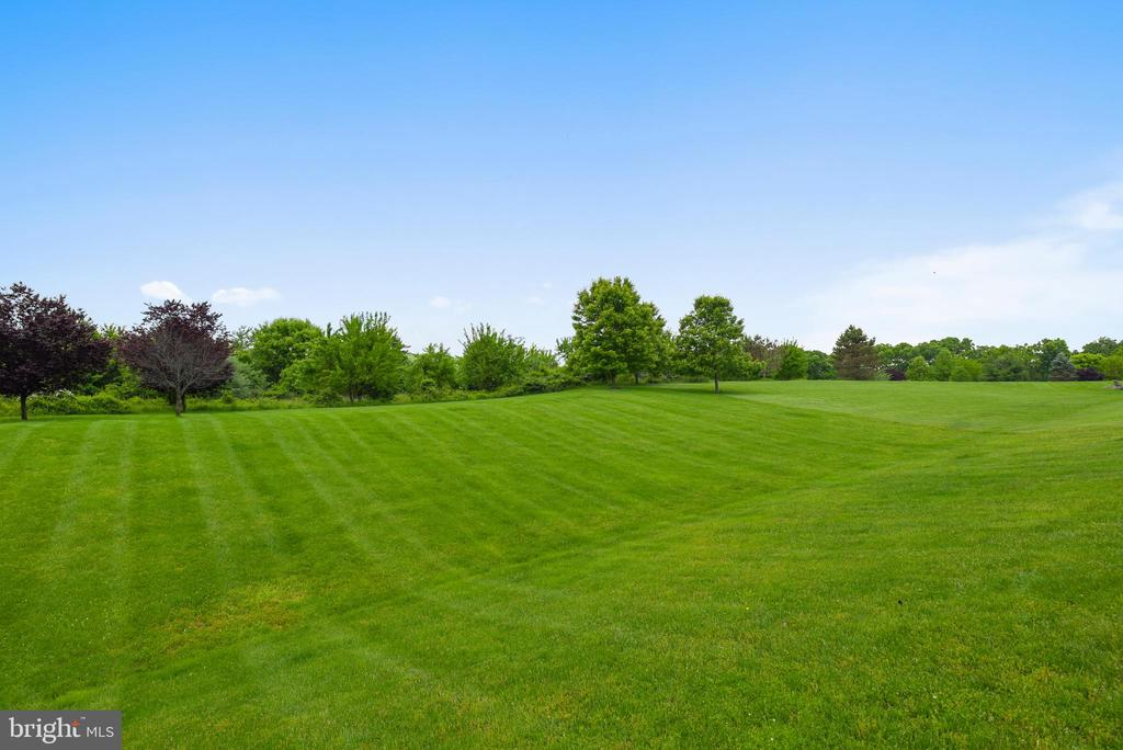 1+ Acre lot backing to 4th Tee Box - 41371 RASPBERRY DR, LEESBURG