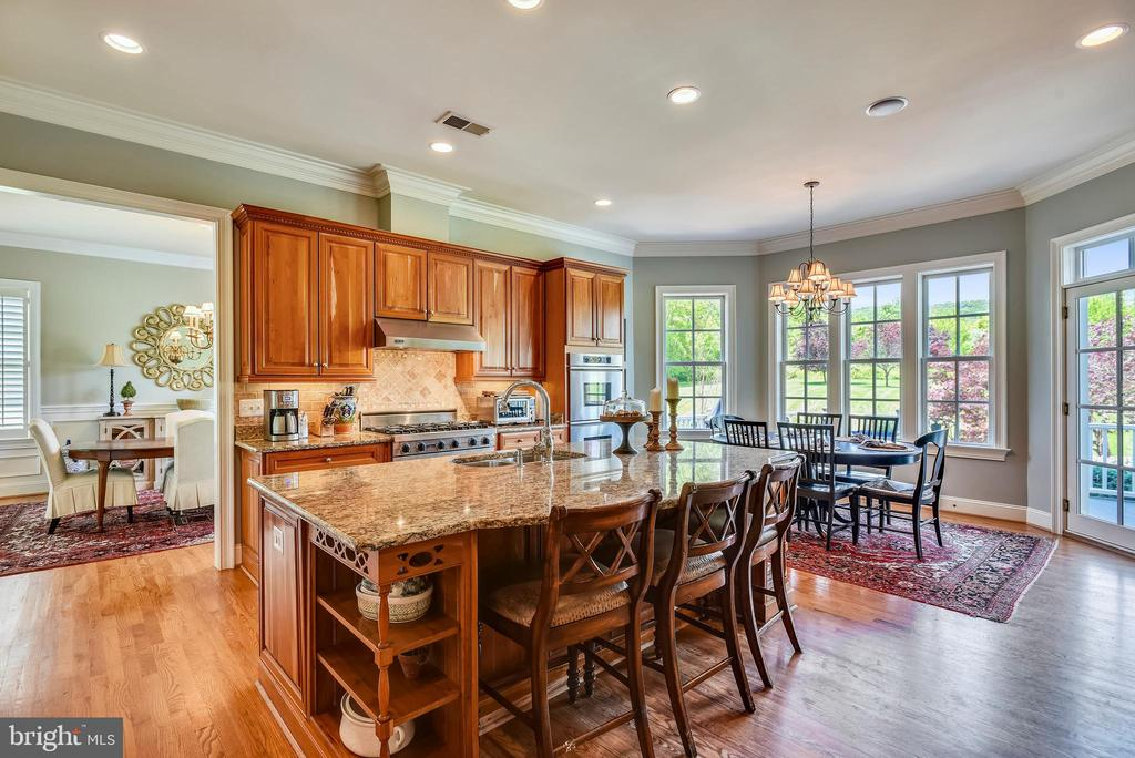 Kitchen with Granite Counter Tops - 41371 RASPBERRY DR, LEESBURG