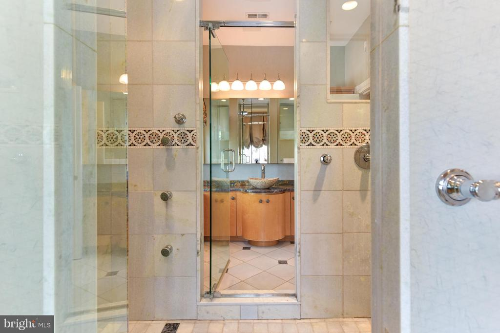Dual entrance master shower - 329 WASHINGTON ST N, ALEXANDRIA