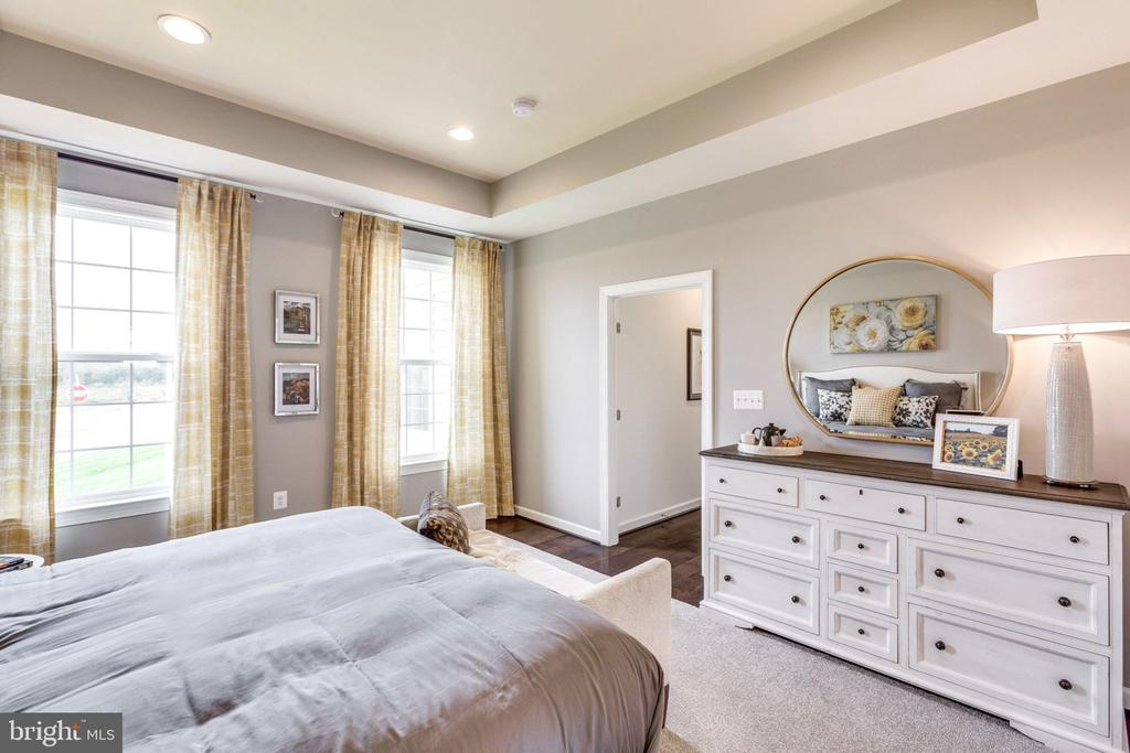 First Floor Guest Suite w/ opt. tray ceiling - 8705 FORMATION DR, FREDERICKSBURG