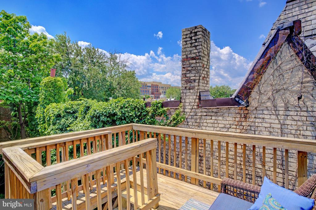 3rd floor deck with treetop views - 834 11TH ST NE, WASHINGTON