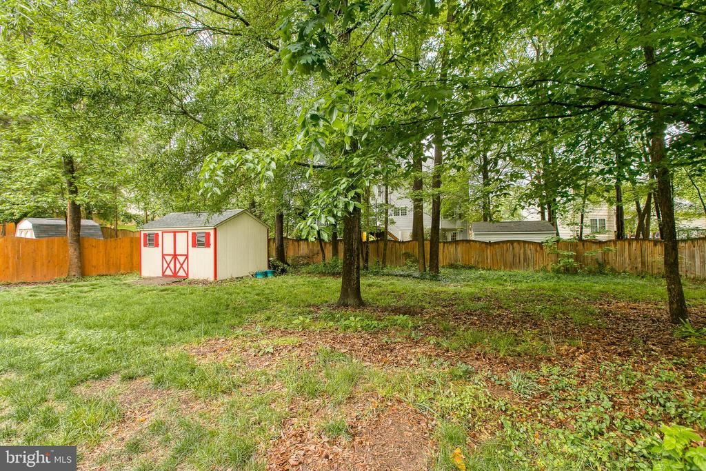 Backyard - 6803 LAKERIDGE DR, FREDERICKSBURG