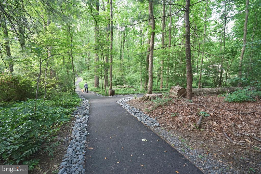 Trails RIGHT in Your Backyard - 8620 APPLETON CT, ANNANDALE