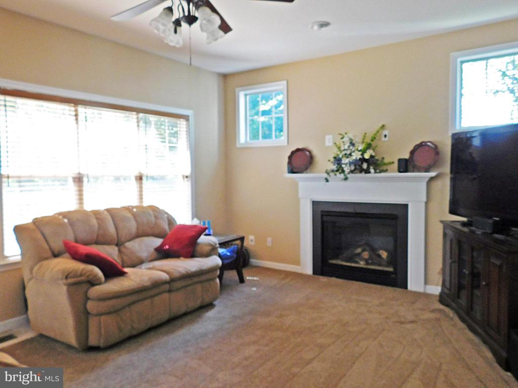 Family Room - view 2 - fireplace, exits to deck - 26013 RACHEL HILL DR, CHANTILLY