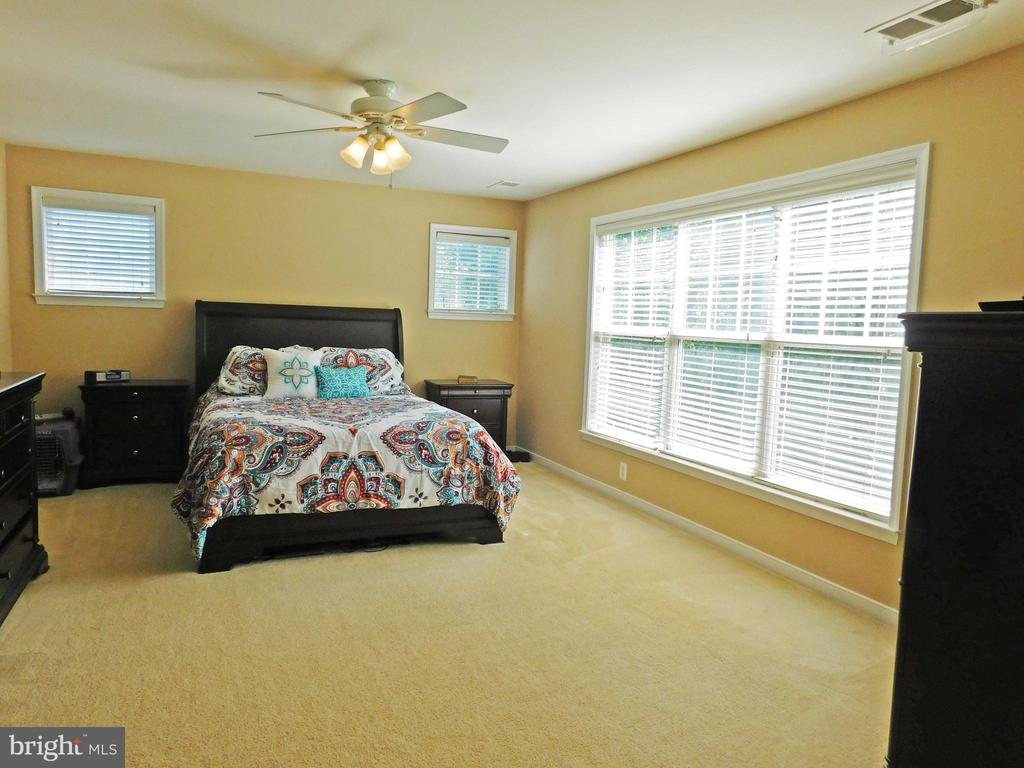 Master Bedroom - large and sunny - view 1 - 26013 RACHEL HILL DR, CHANTILLY