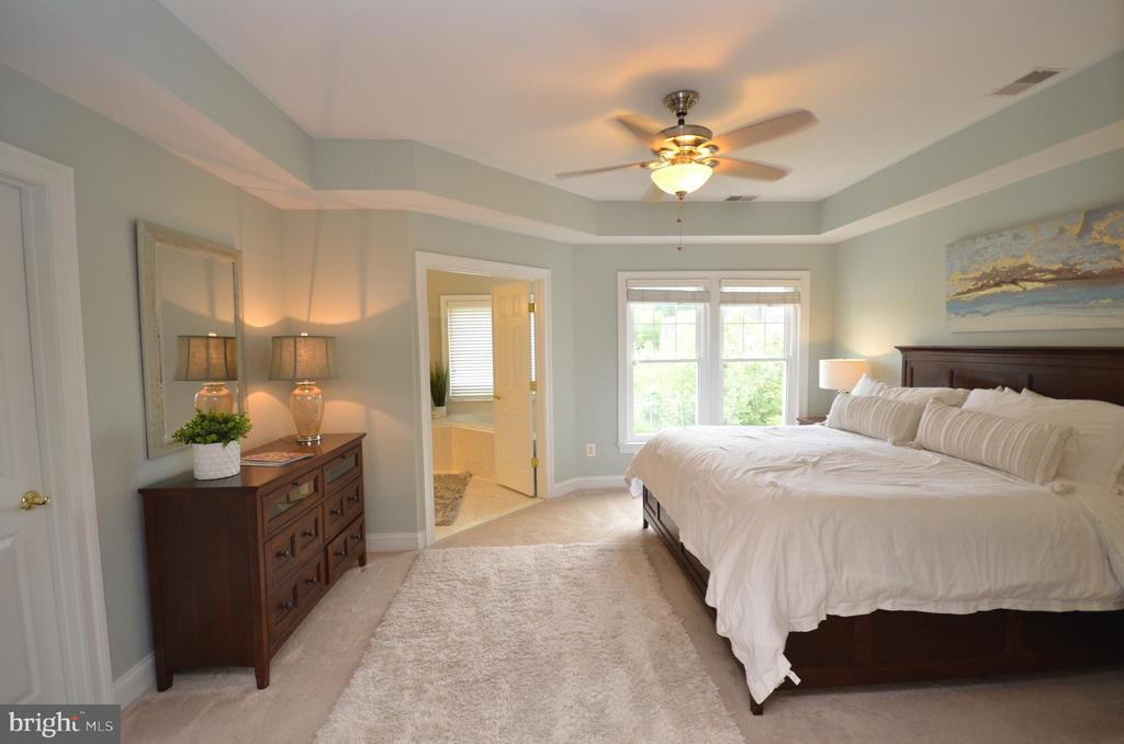 Beautiful Owner's Suite - 43013 MILL RACE TER, LEESBURG