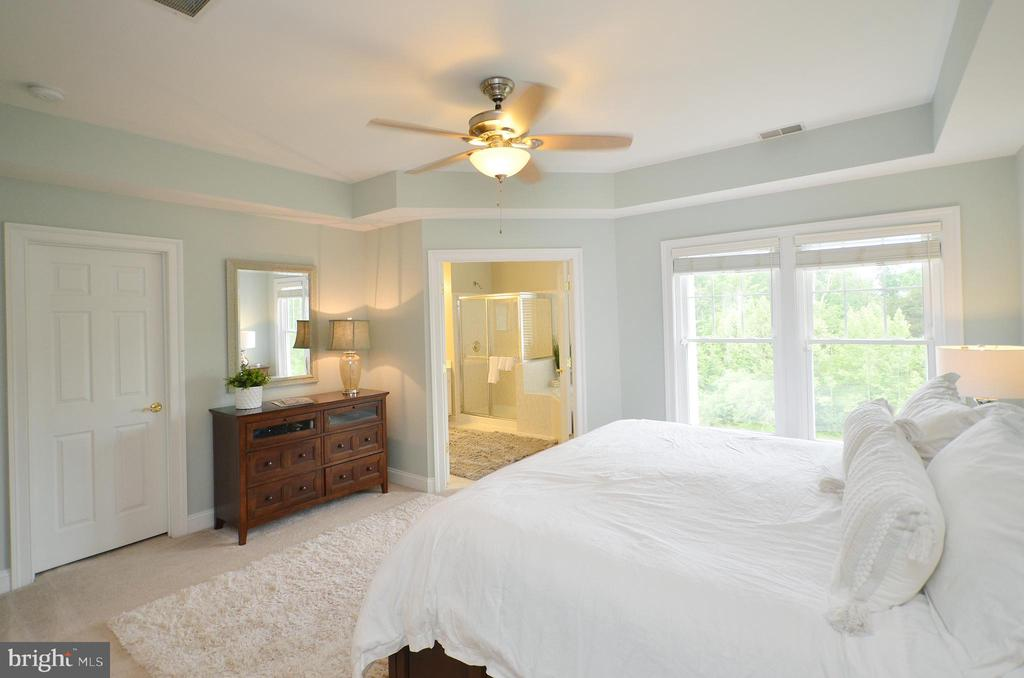 Alternate View of Master Bedroom - 43013 MILL RACE TER, LEESBURG