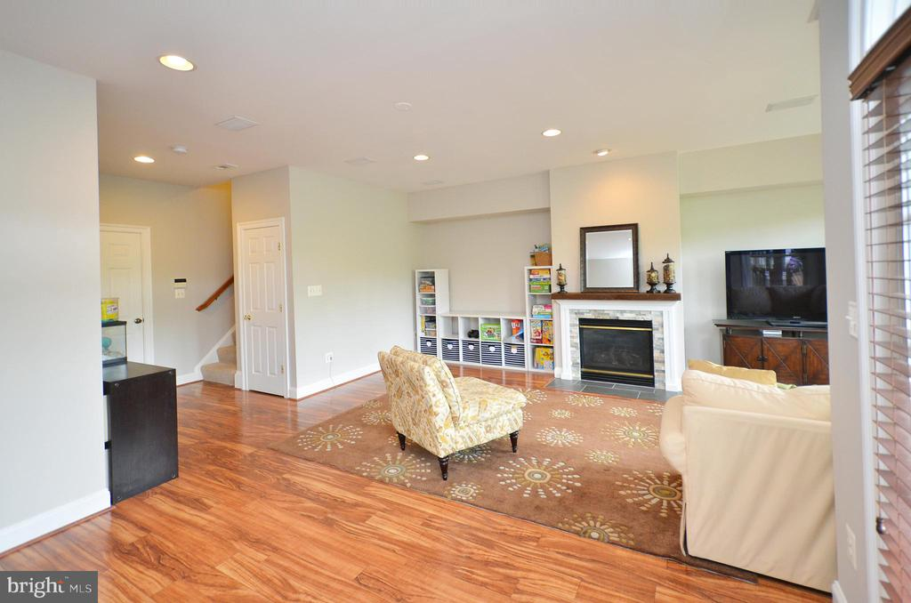 Gorgeous Basement! - 43013 MILL RACE TER, LEESBURG