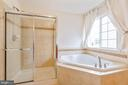 Standing shower & soaking tub. - 222 POLARIS DR, WALKERSVILLE