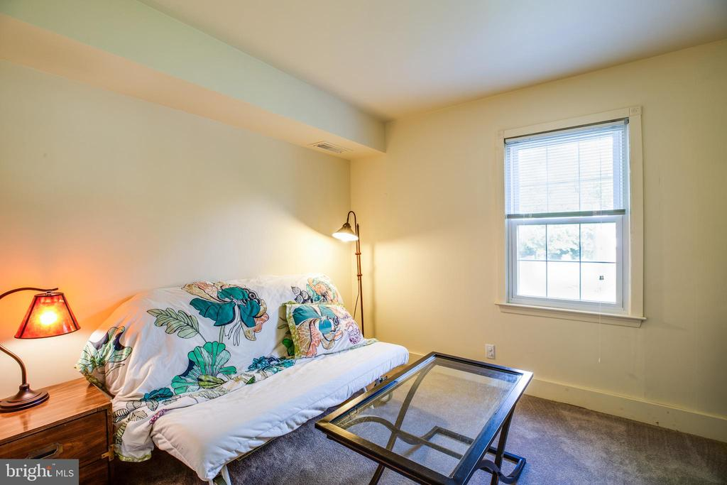 Lower Level Bedroom with Large  Closet - 141 CHOPTANK RD, STAFFORD