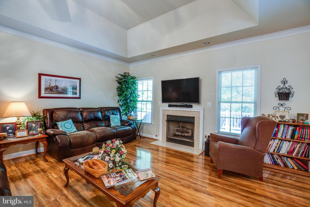 Tray ceiling and Bamboo Floors - 96 CASCADE LN, FREDERICKSBURG