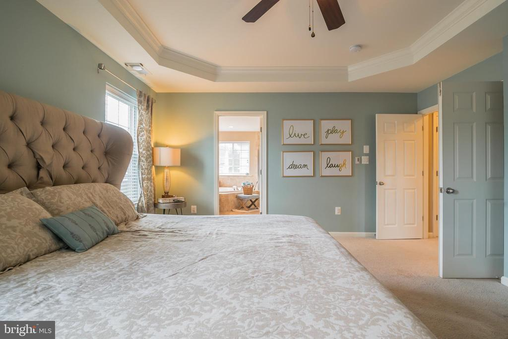 Cozy & Relaxing Master Suite with Tray Ceilings! - 42365 WINSBURY WEST PLACE, STERLING