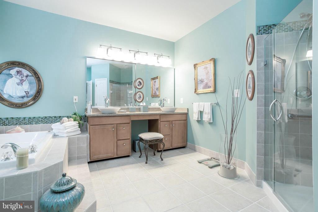SUNNY~ MASTER BA, SEP JACUZZI & SHOWER + DBL SINKS - 19676 PLAYER CT, ASHBURN