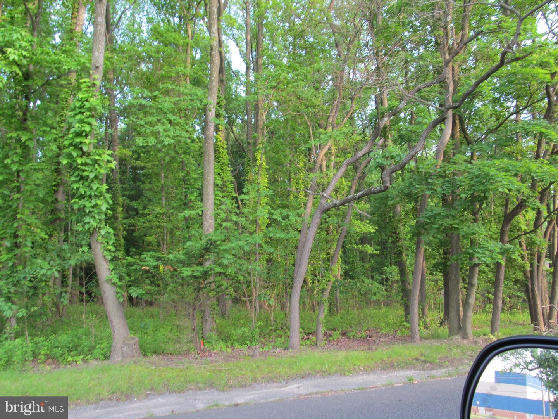 Terreno per Vendita alle ore Cherry Hill, New Jersey 08002 Stati Uniti