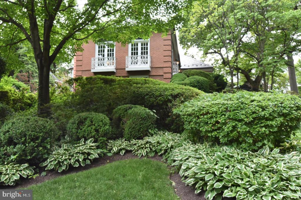 Professional landscaping - 1925 SUMMIT TER, ALEXANDRIA