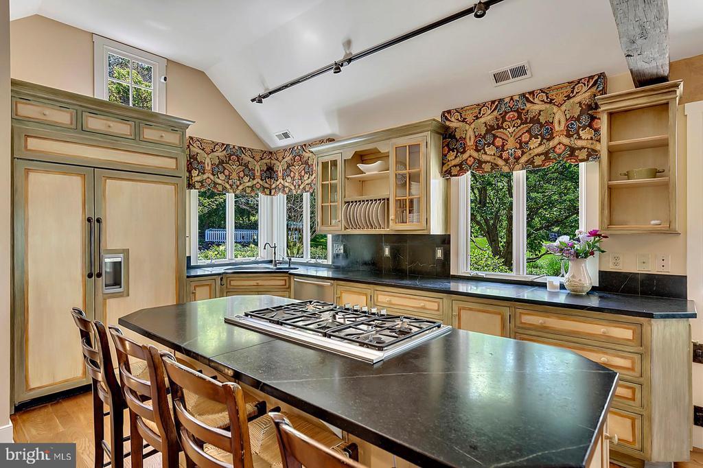 Deluxe Kitchen- Subzero fridge, Thermador 6 range - 39455 DIGGES VALLEY RD, HAMILTON
