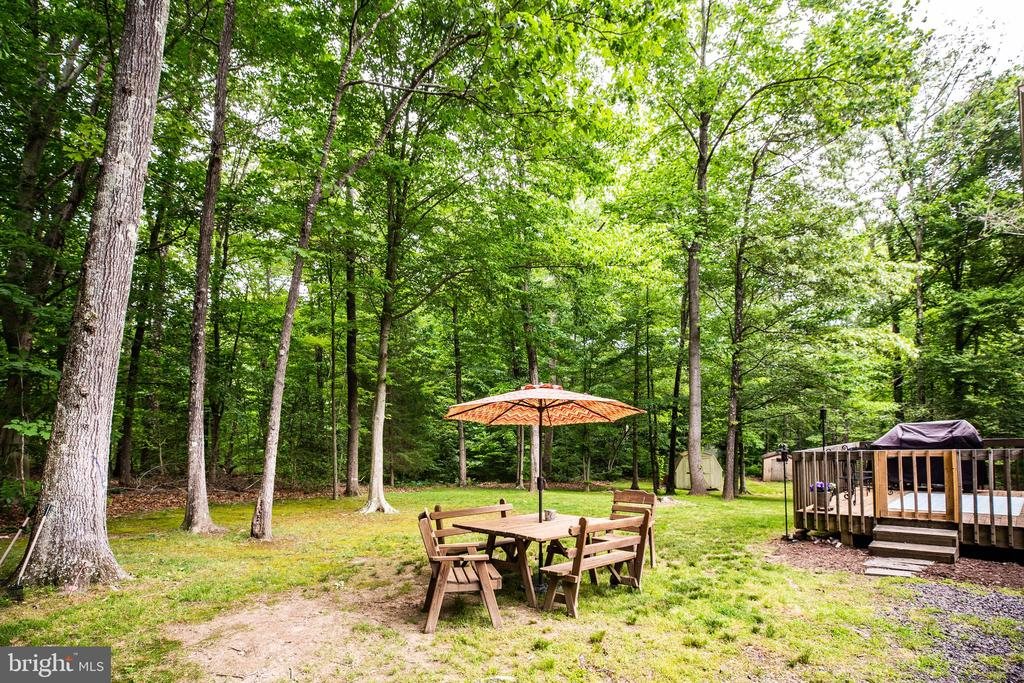 Backyard - 6293 WATERFORD RD, RIXEYVILLE
