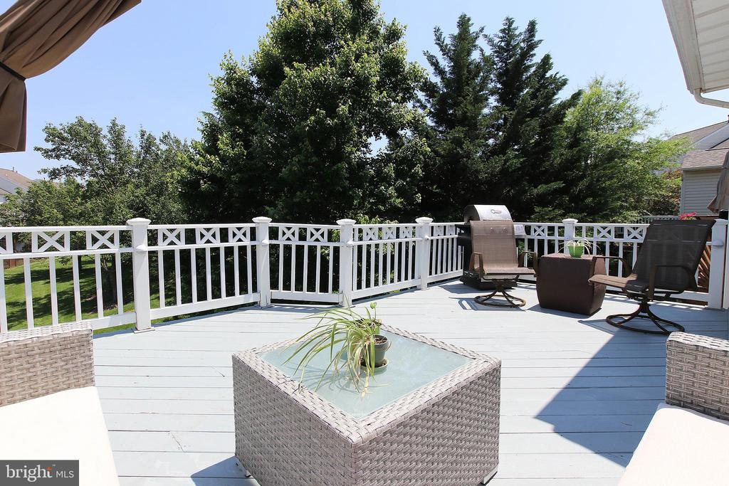 Expansive, Freshly Painted Deck - 21344 SAWYER SQ, ASHBURN
