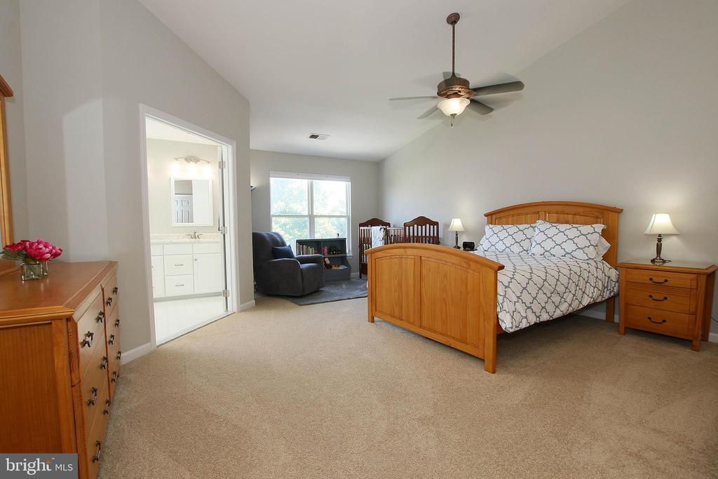 Master Complete with Bumpout for Much Added Space - 21344 SAWYER SQ, ASHBURN