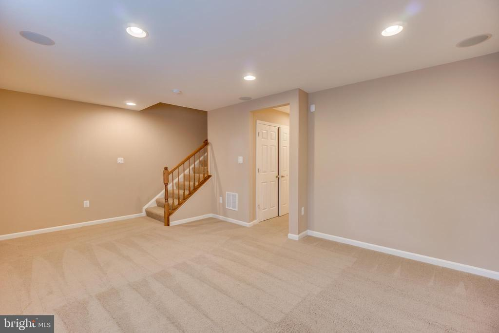Carpeted Basement - 204 APRICOT ST, STAFFORD