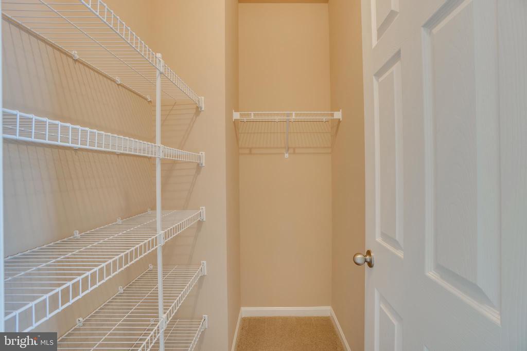 Master Closet 2 - 204 APRICOT ST, STAFFORD