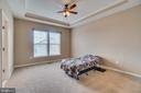 Tray Ceiling in Master - 204 APRICOT ST, STAFFORD