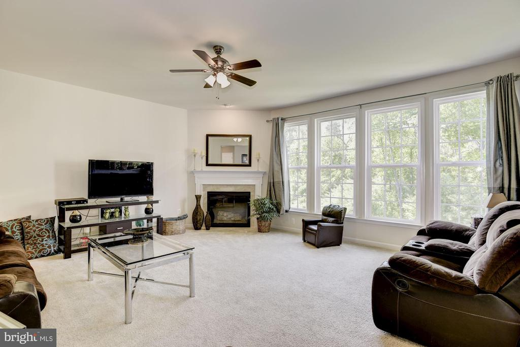 Family Room - 41521 GOSHEN RIDGE PL, ALDIE