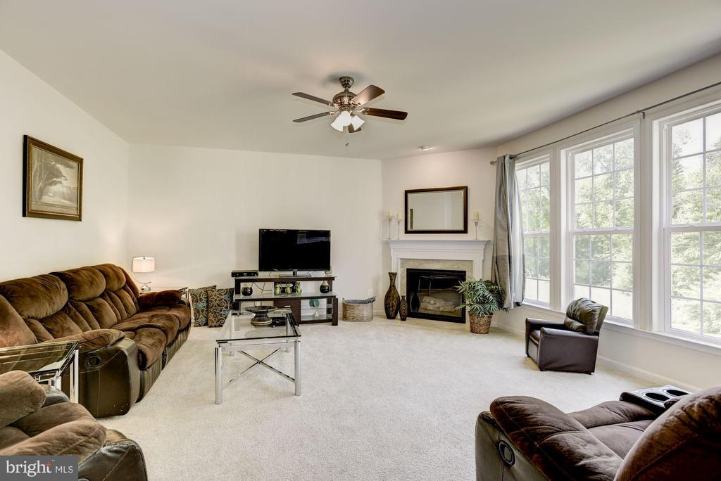 Family Room with Gas Fire Place - 41521 GOSHEN RIDGE PL, ALDIE