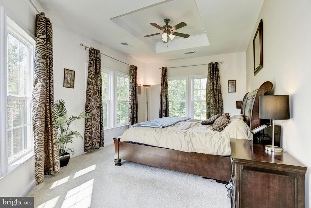 Master bedroom - 41521 GOSHEN RIDGE PL, ALDIE