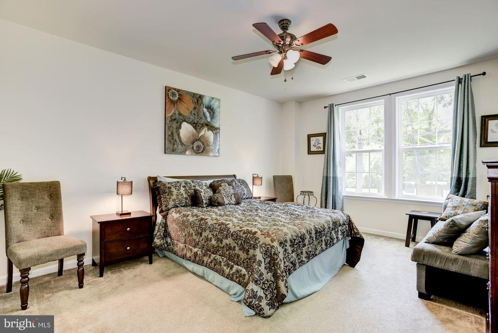 Lower level suite - 41521 GOSHEN RIDGE PL, ALDIE
