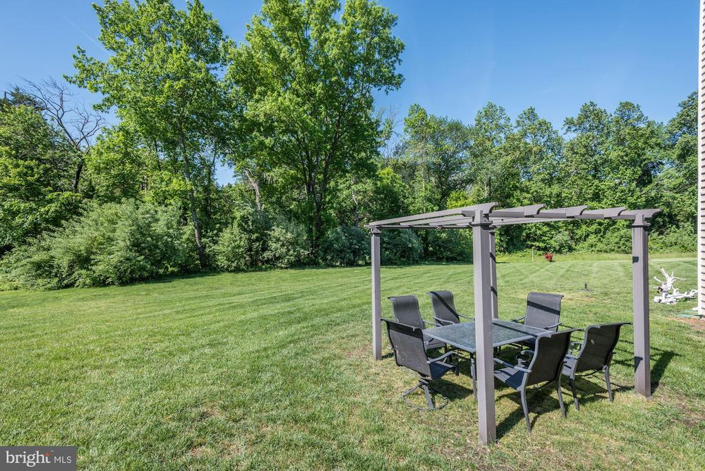 Back yard - 41521 GOSHEN RIDGE PL, ALDIE