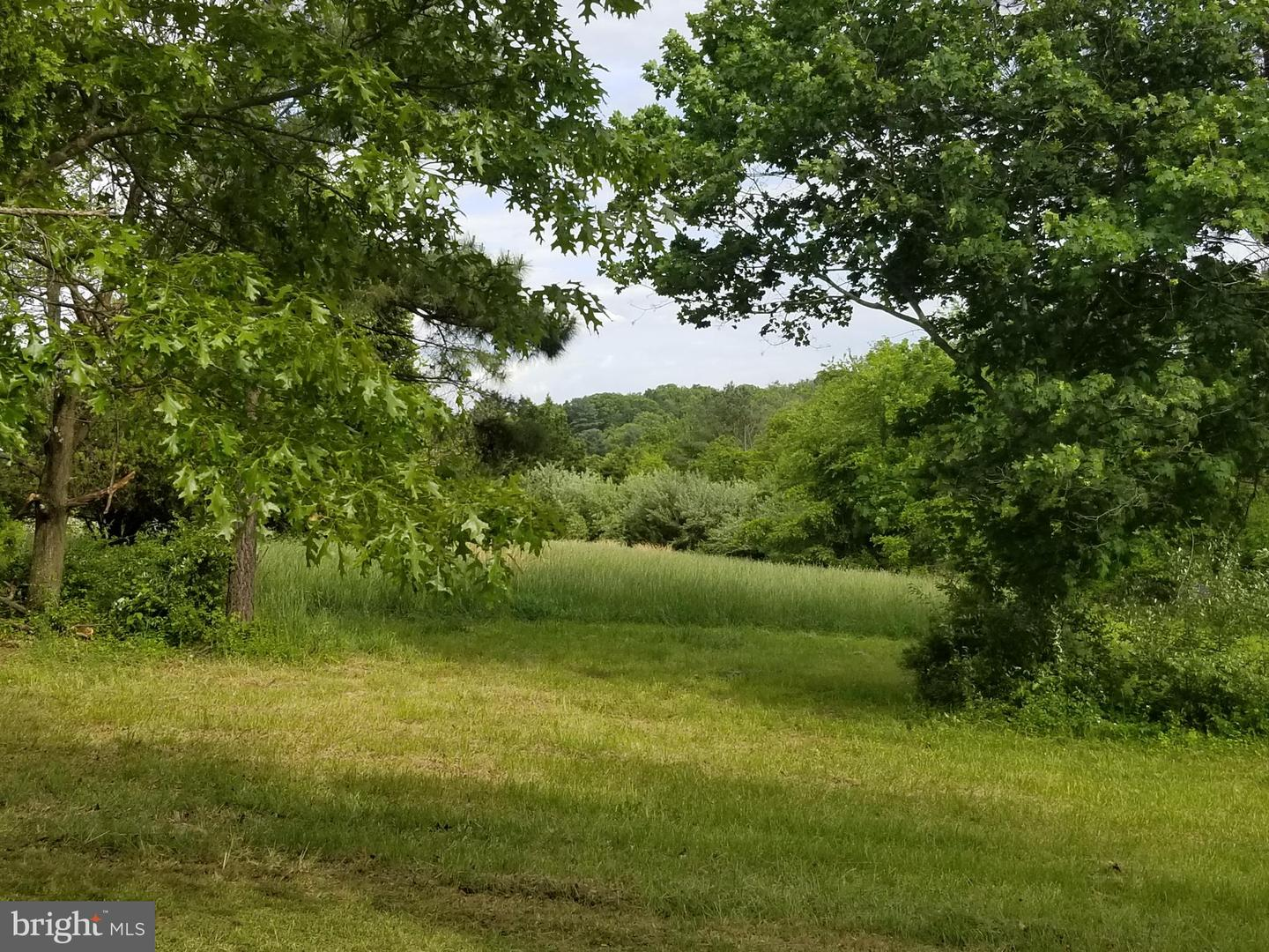 Land for Sale at Winchester, Virginia 22602 United States