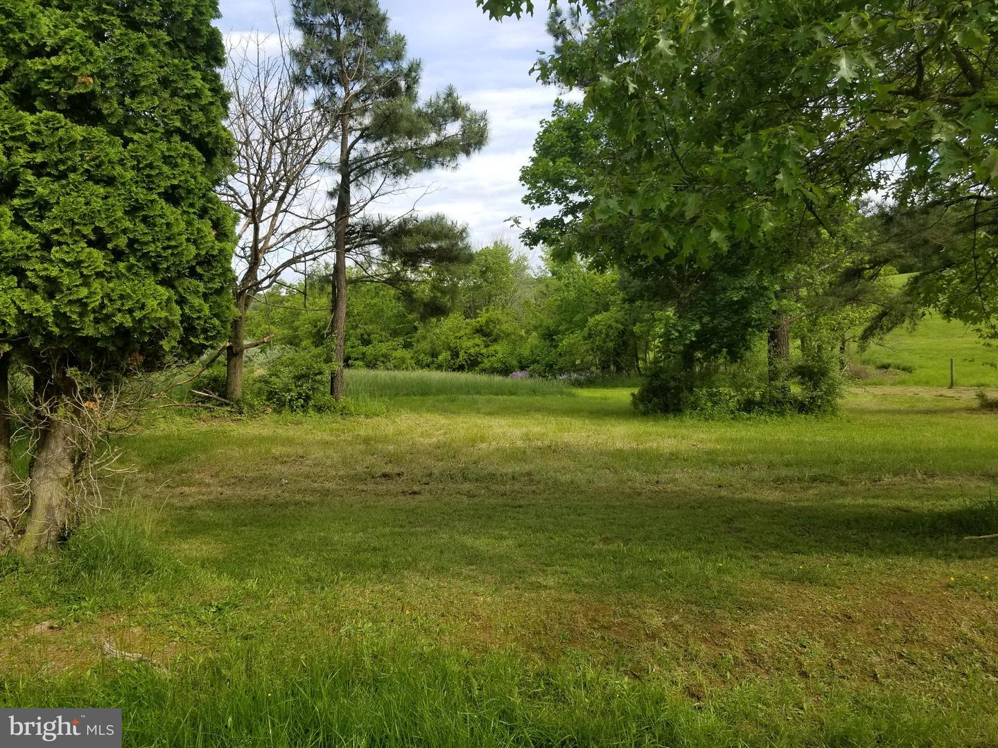 Additional photo for property listing at  Winchester, Virginia 22602 United States