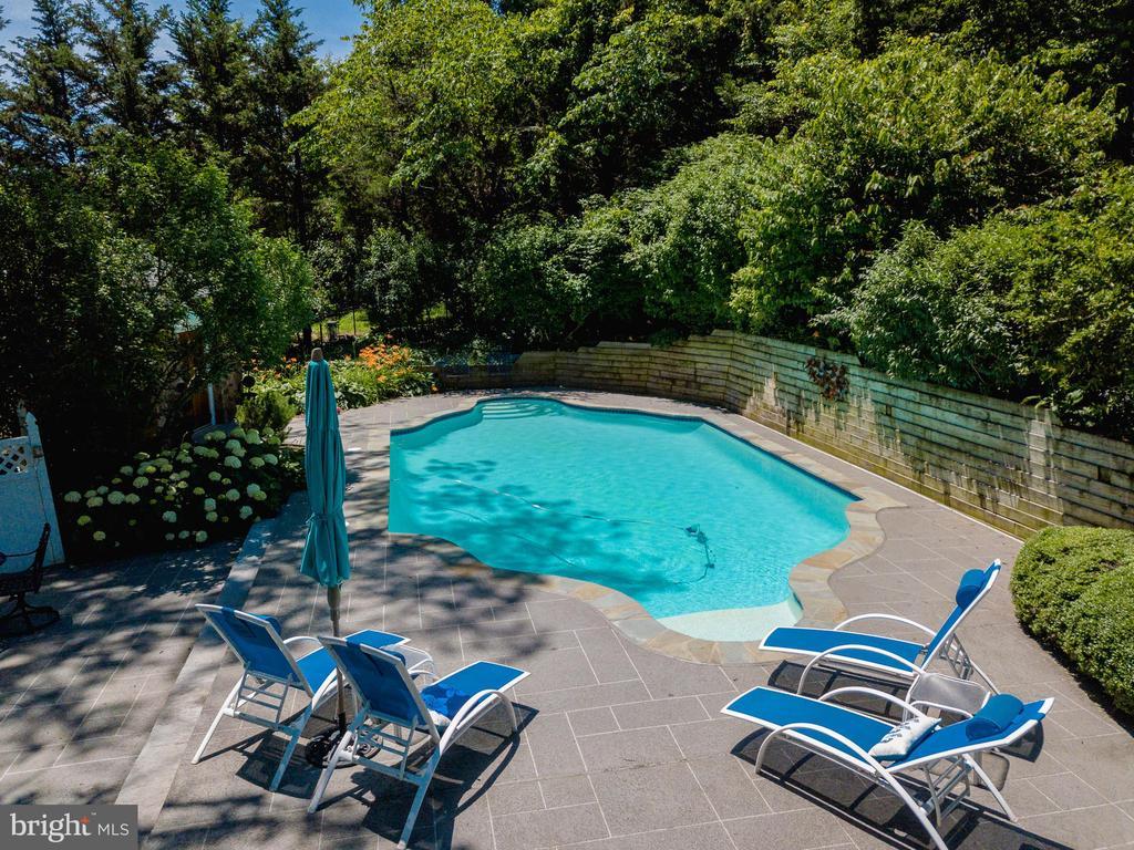 Heated Pool - 18490 BLUERIDGE MOUNTAIN RD, BLUEMONT