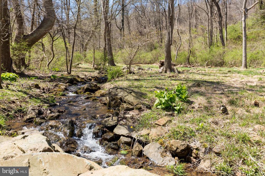 Natural mountain fed stream - 18490 BLUERIDGE MOUNTAIN RD, BLUEMONT