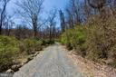 The road leading to your private hunting cabin - 18490 BLUERIDGE MOUNTAIN RD, BLUEMONT