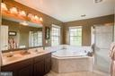 Master bedroom luxury bath- soaking tub-sep shower - 21372 SMALL BRANCH PL, BROADLANDS