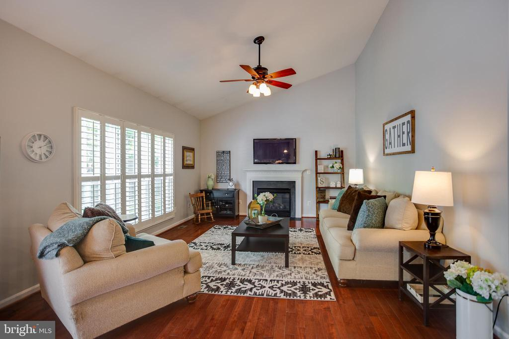 Family rooms with vaulted ceiling & ceiling fan - 21372 SMALL BRANCH PL, BROADLANDS
