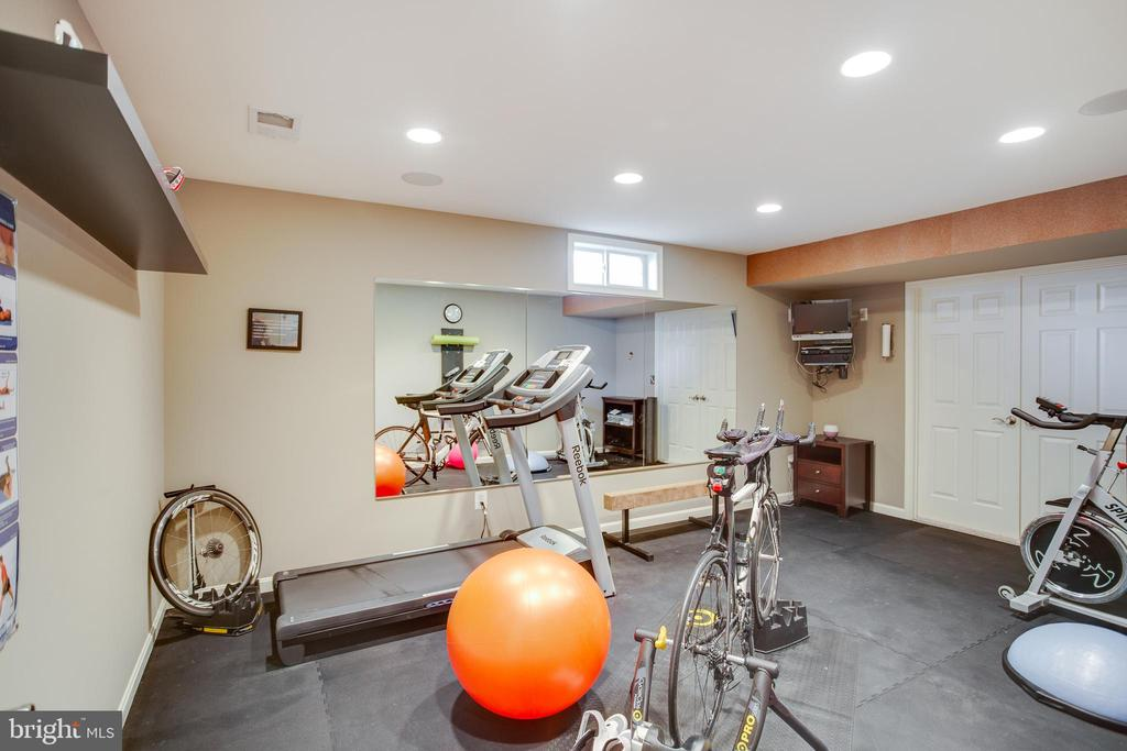 Lower level exercise/ game room - 21372 SMALL BRANCH PL, BROADLANDS
