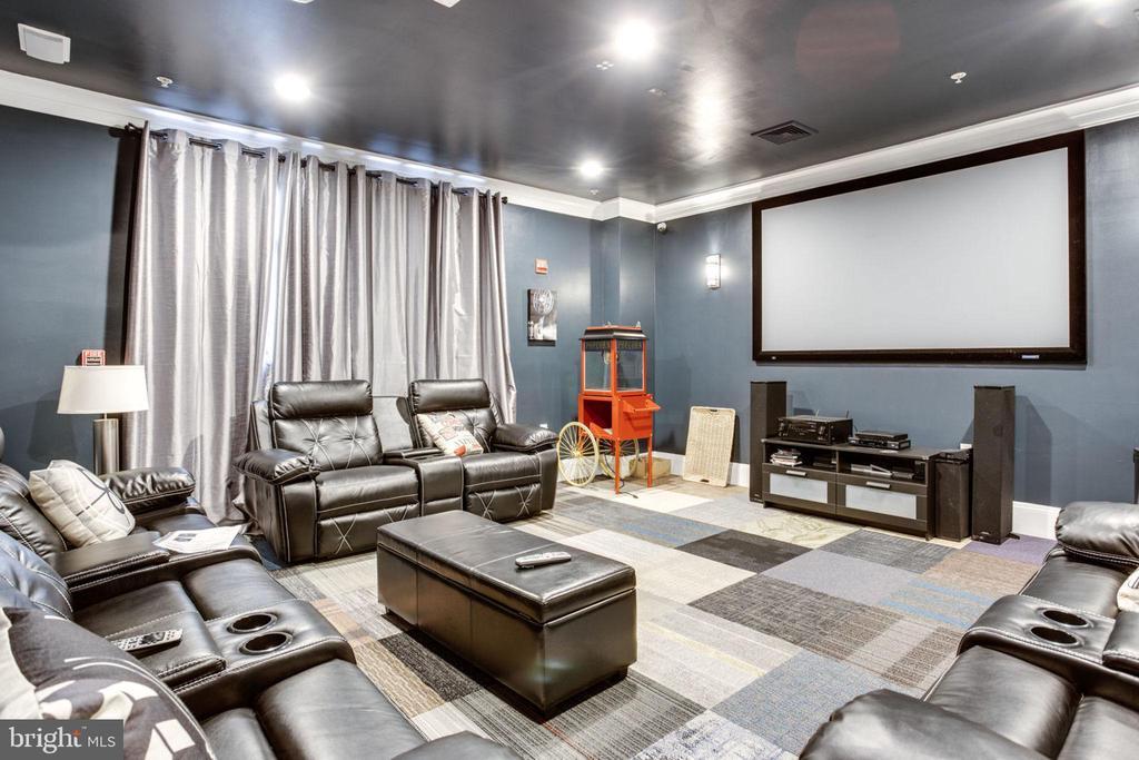 Recently Renovated Media Room - 2055 26TH ST S #5-201, ARLINGTON