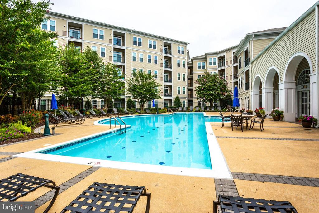 Beautiful Recently Renovated Pool Area - 2055 26TH ST S #5-201, ARLINGTON