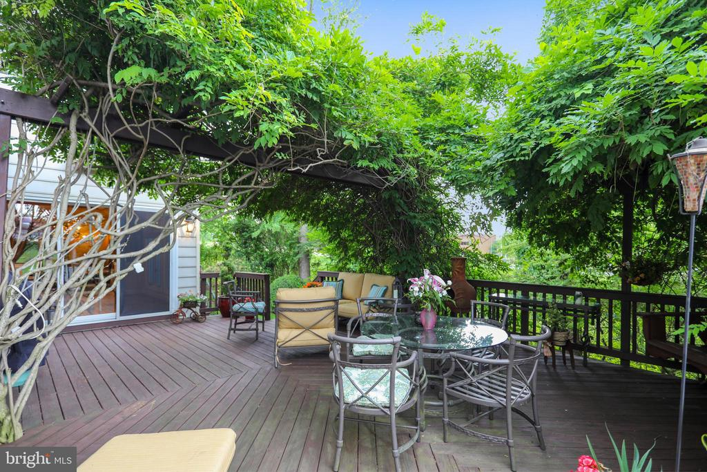Weaving wisteria provides private cover - 11 CLIMBING ROSE CT, ROCKVILLE