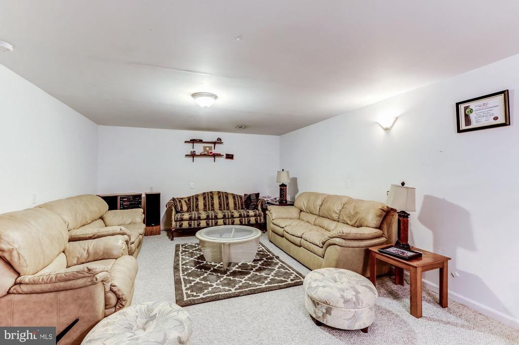 Basement - 43255 TISBURY CT, CHANTILLY