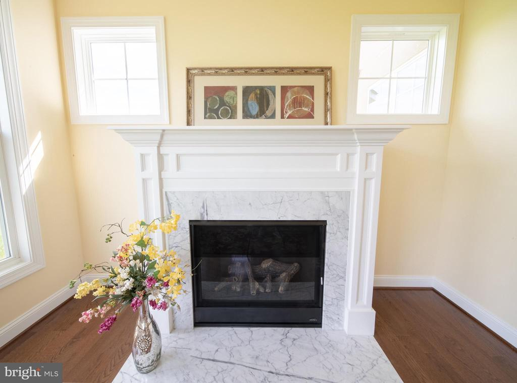 Fireplace for Cold days - 208 SAINT ANDREWS CT, WINCHESTER