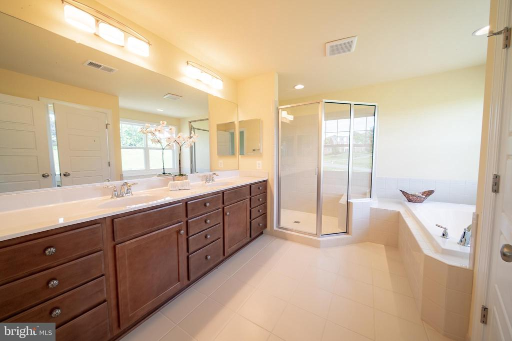 Owners Bath - 208 SAINT ANDREWS CT, WINCHESTER